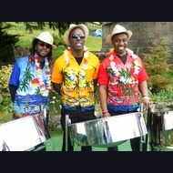 Folk, Roots & World Band: Band One Steel Band