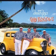 Beach Boys Tribute Band: Good Vibrations